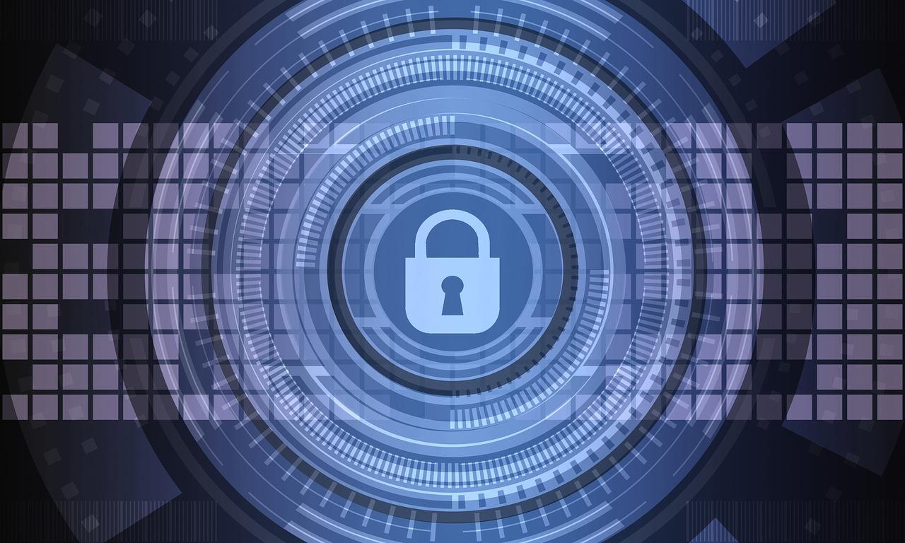 Direction interministérielle du numérique et du système d'information et de communication de l'État (DINSIC)